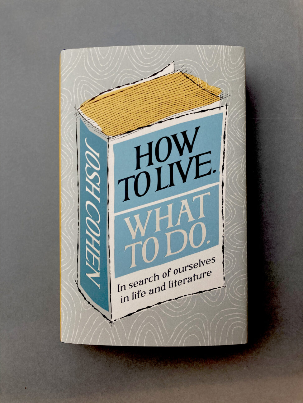 Cover design for How To Live What To Do by Josh Cohen